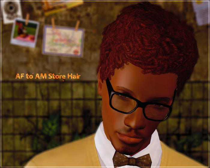 AF to AM Store Hair - Short Afro hairstyle by Aikea