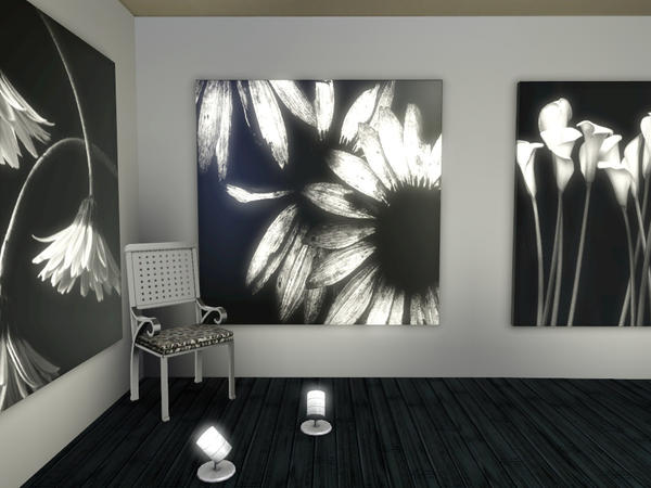 Black and White Florals Painting Collection by wolfspryte