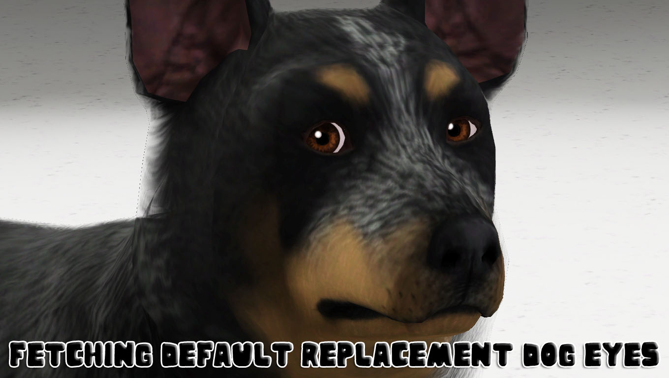 Fetching Dog Eye Default Replacements by traelia