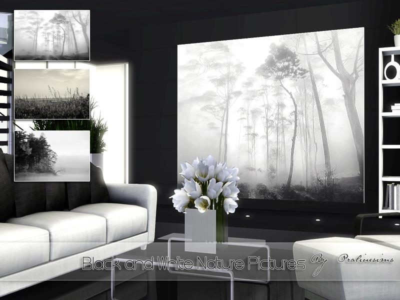 Black and White Nature Pictures by Pralinesims