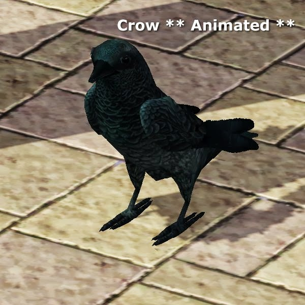 Crow Animated by CFP