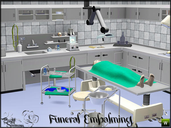 Embalming Room Pt. 1 by BuffSumm