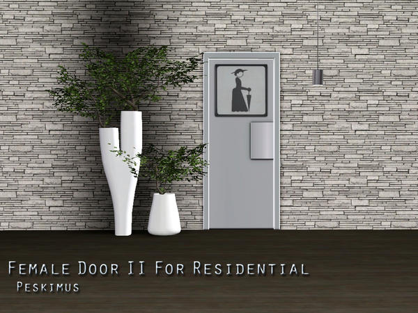Male And Female Doors For Residential by peskimus