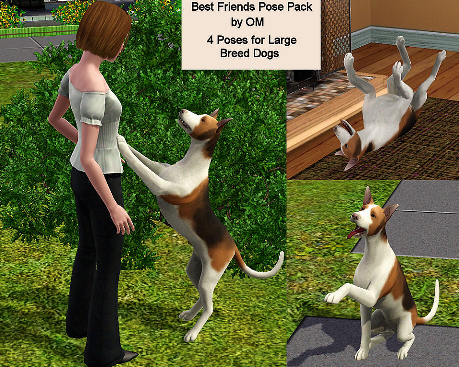 Best Friend Pose Pack by Orangemittens