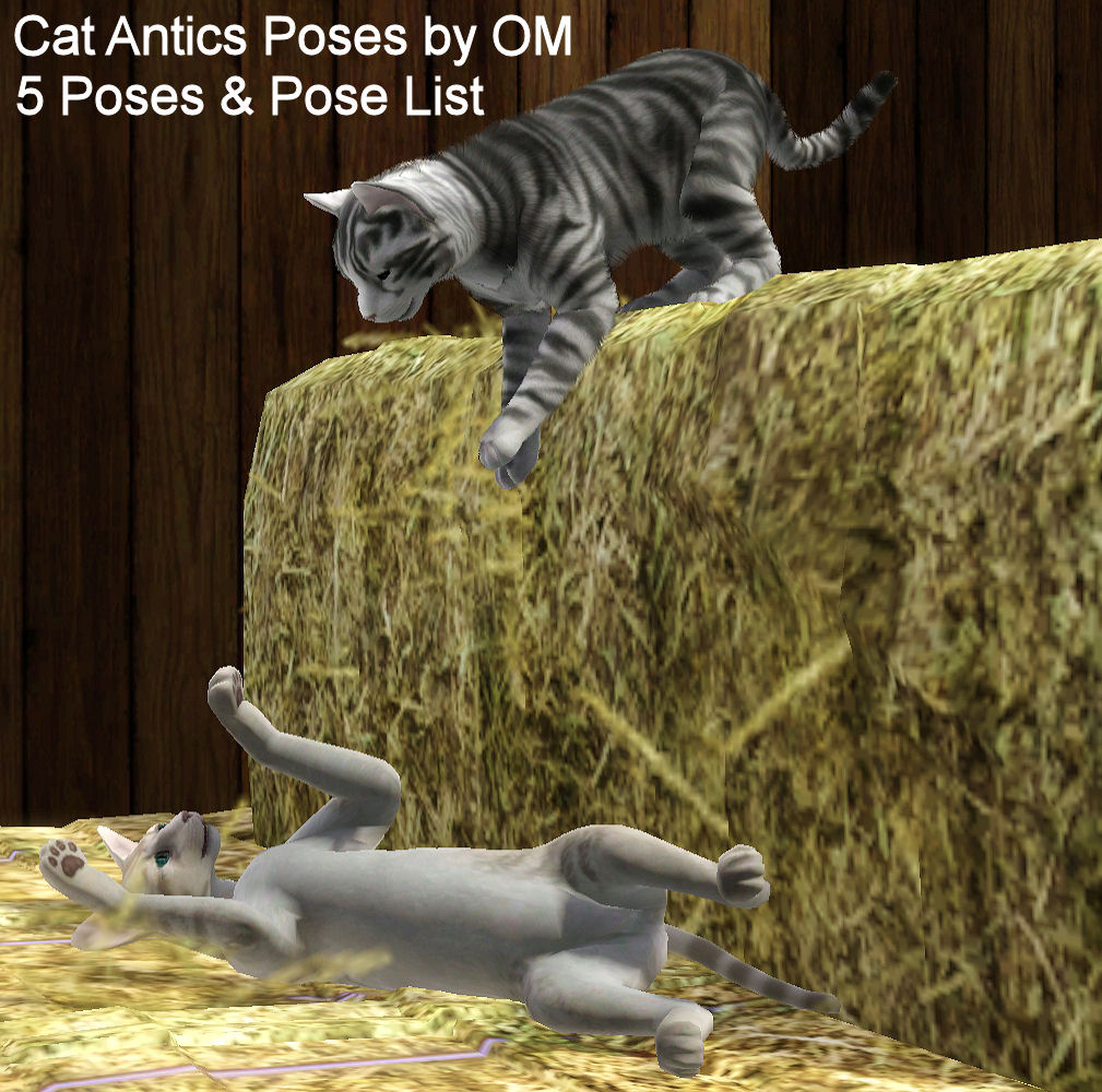 Antics Pose Pack for Cats by Orangemittens