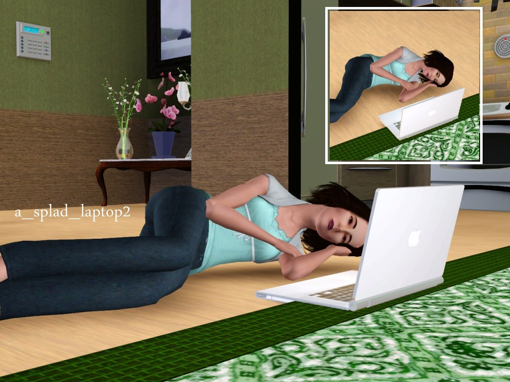 Laptop Poses by spladoum