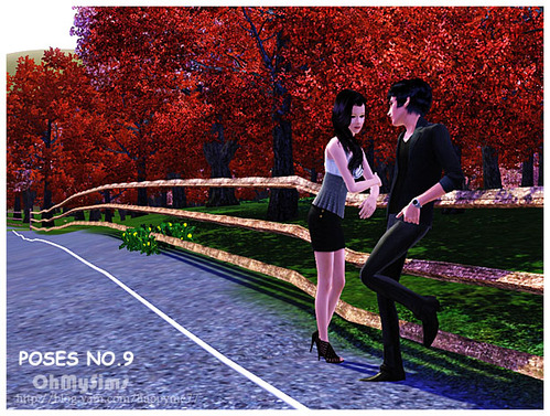 Poses NO.9 fence by happyme77