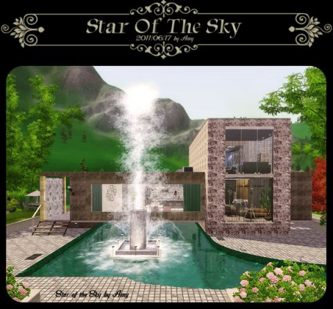 Star of teh sky by Amy