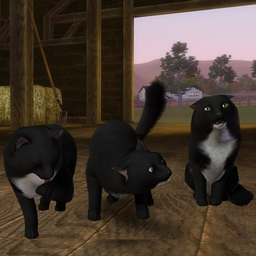 Cat Blacky by 19sims3blog