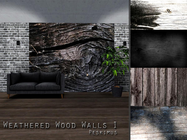 Weathered Wood Walls I by peskimus