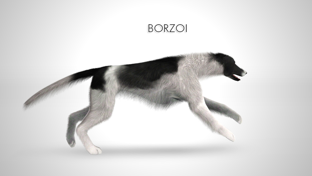 Improved Borzoi by Morganabananasims