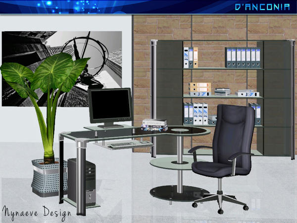 d'Anconia Home Office by NynaeveDesign