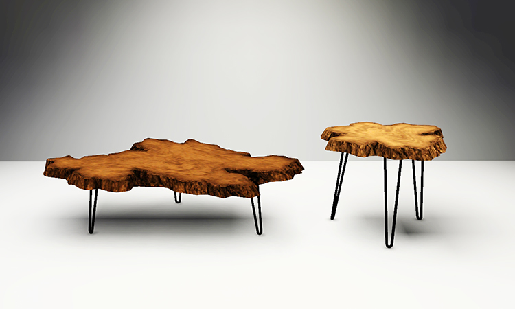 Live Edge Burl Wood Coffee and End Tables by Gelina