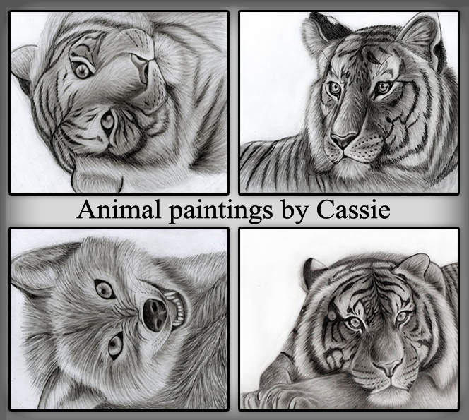 Animal paintings by Cassie