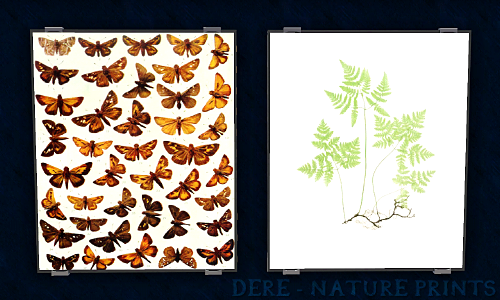 Botanical and Butterfly picture by Daggryning