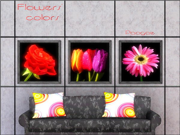 Flowers colors by Paogae