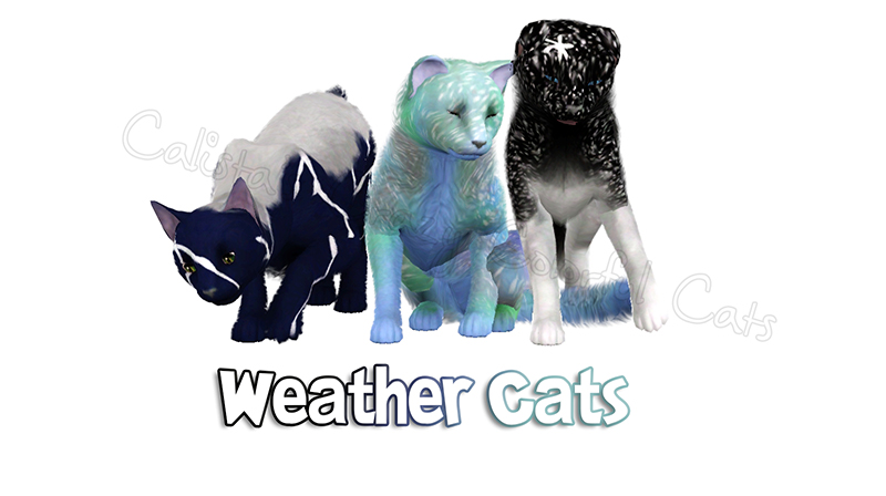 Weather Cats by Catlover