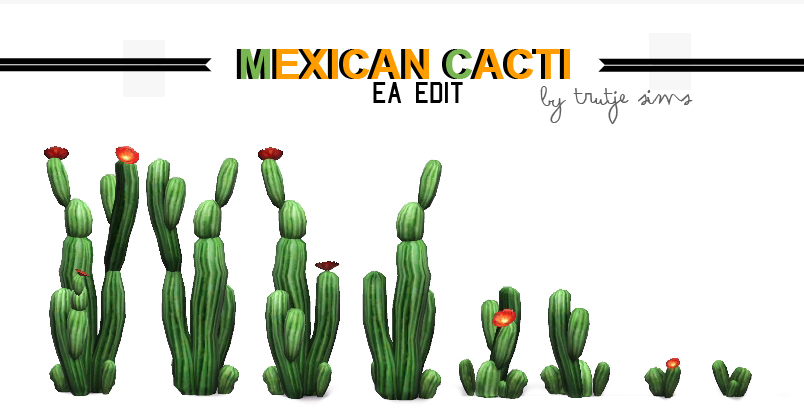 Mexican Cacti by Trutjesims