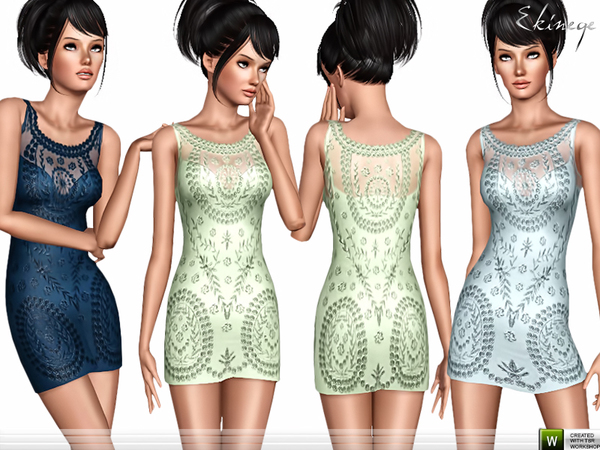 Embroidered Lace Dress by ekinege