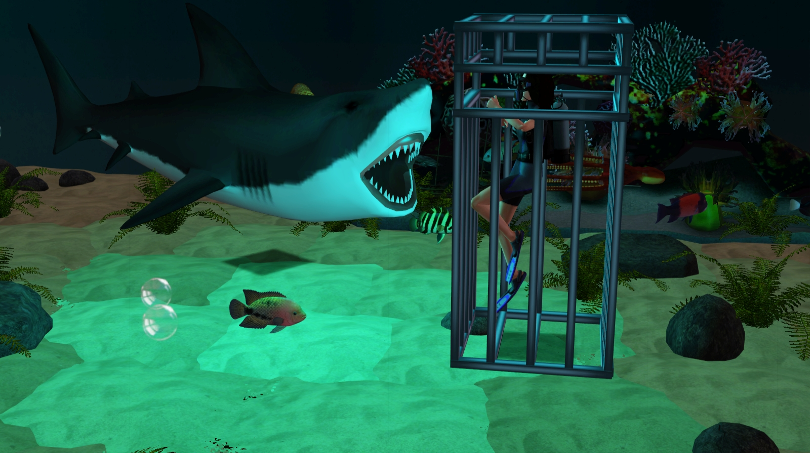 Shark Cage by Sil Sharkie