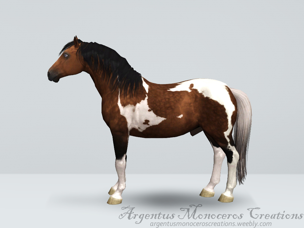 Bay pinto horse by ArgentusMonoceros