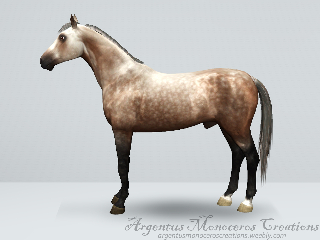 Dapple grey horse by ArgentusMonoceros