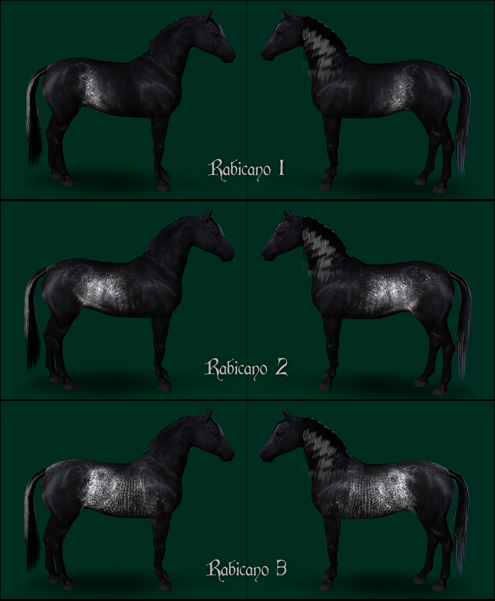 Rabicano Markings Set by Eldervinefields