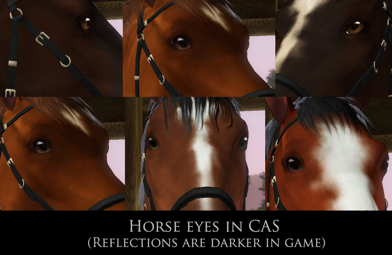 Default Horse Eyes by Corapntr