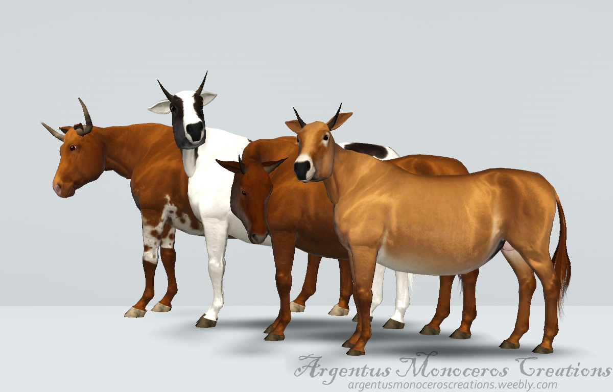 4 cow breeds by ArgentusMonoceros