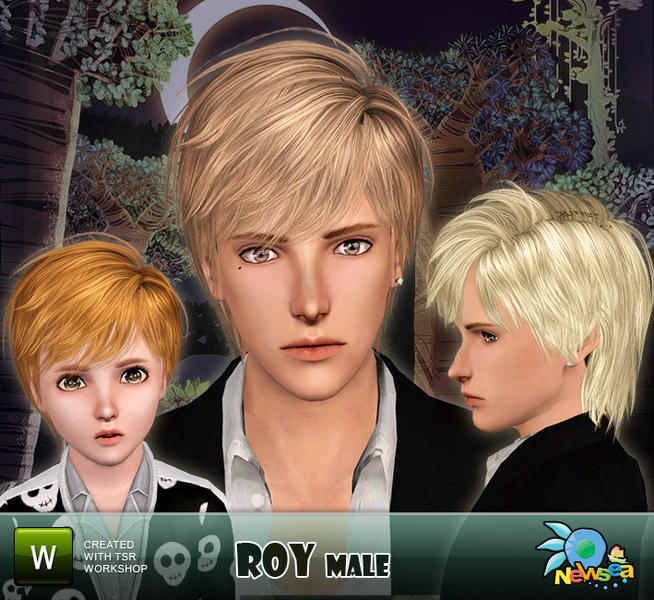 Newsea Roy Male Hairstyle