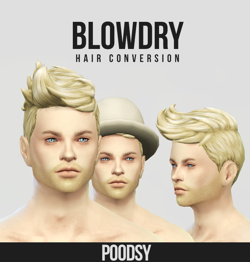 Blowdry Female to Male Conversion Hair by Poodsy