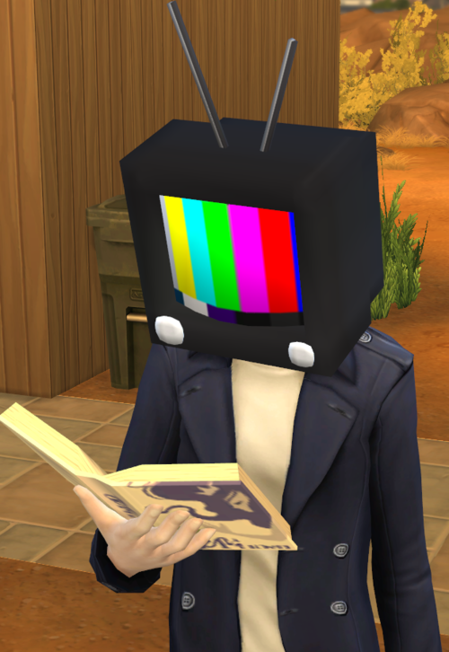TV Head Accessory for Males & Females by void-sims