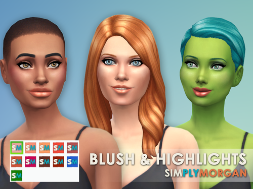 Blush & Highlights (Standalone) by SimplyMorgan