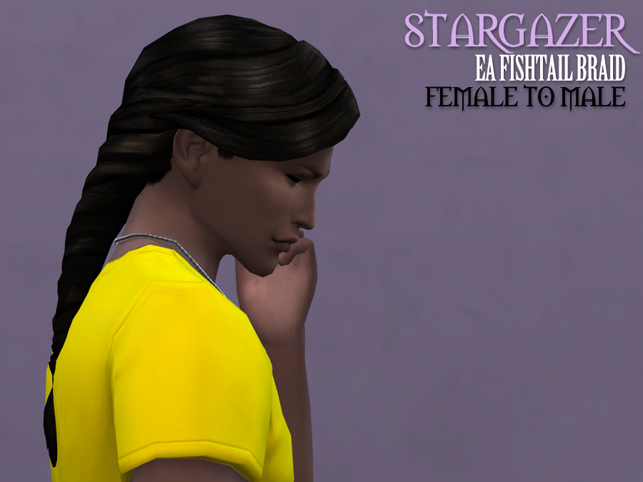 Stargazer EA Fishtail Braid for Males by ThePathOfNevermore