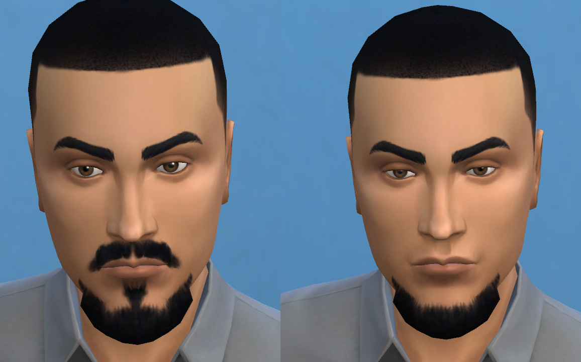 Vandyke medium and goatee medium beards by necrodog