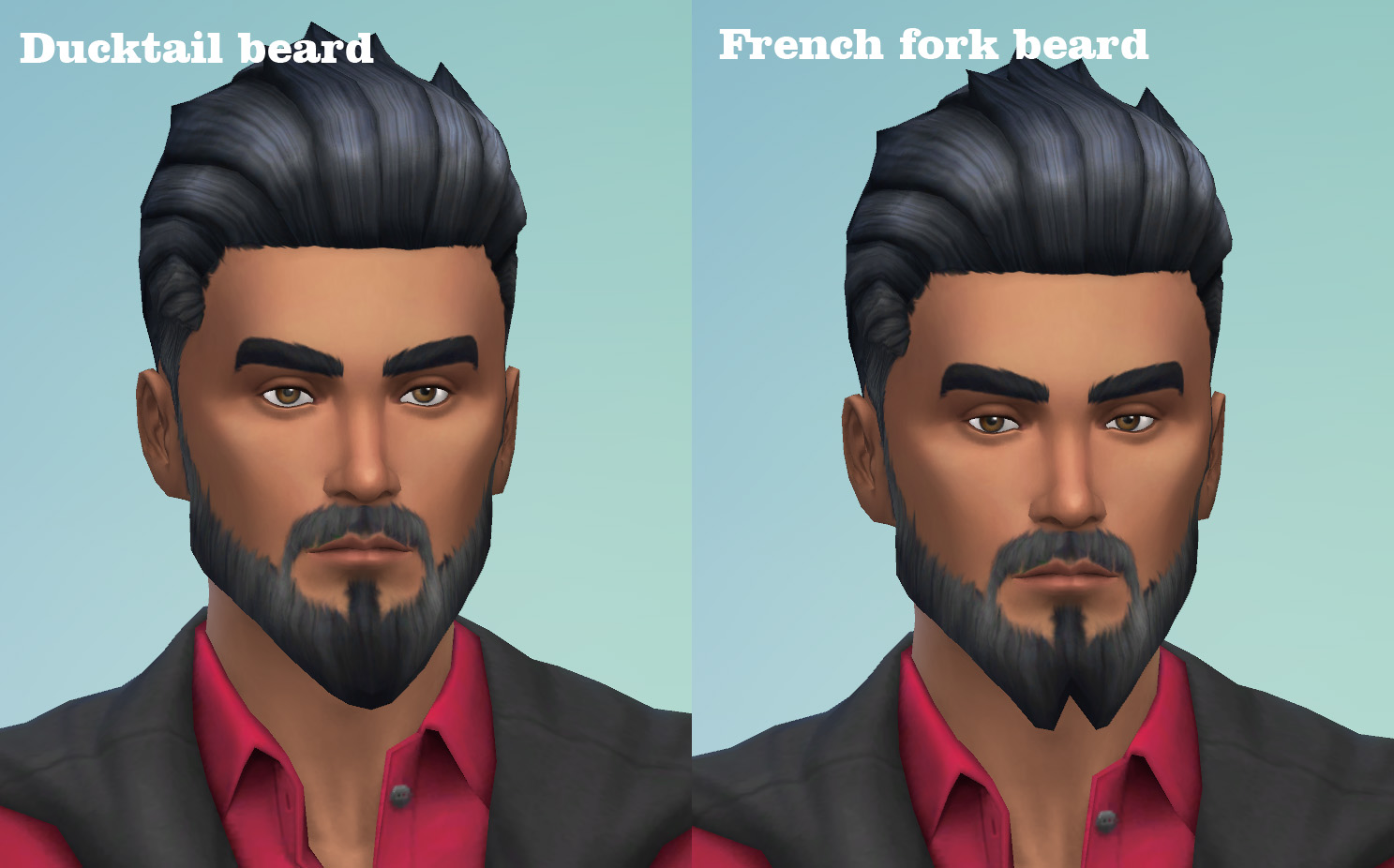 Ducktail and French Fork beards by necrodog