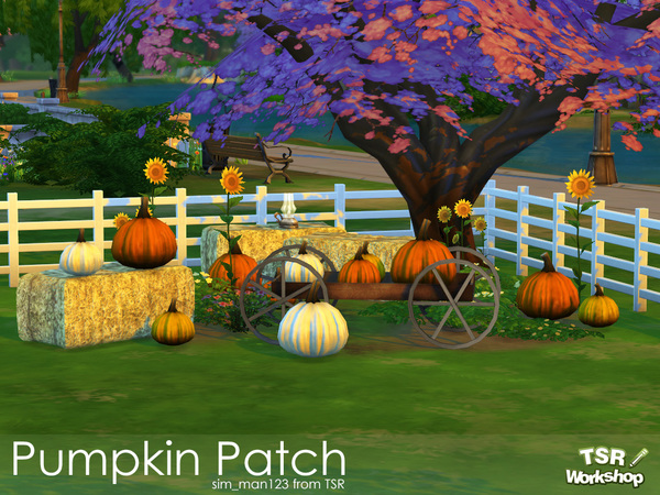 Pumpkin Patch by sim_man123