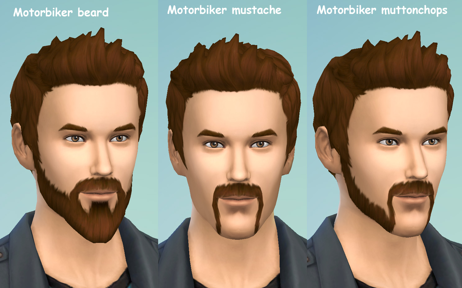 Motorbiker beard mustache and muttonchops by necrodog