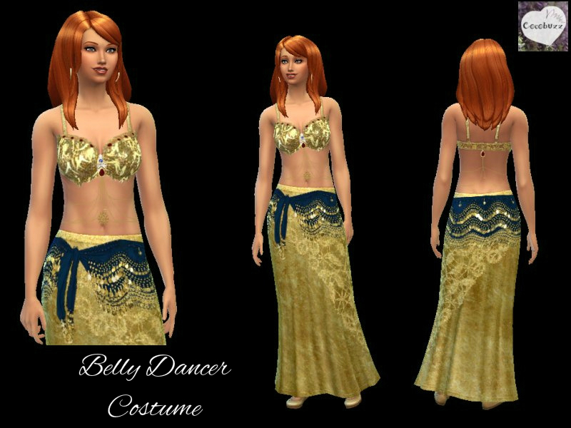 Belly Dancer Costume by Cocobuzz