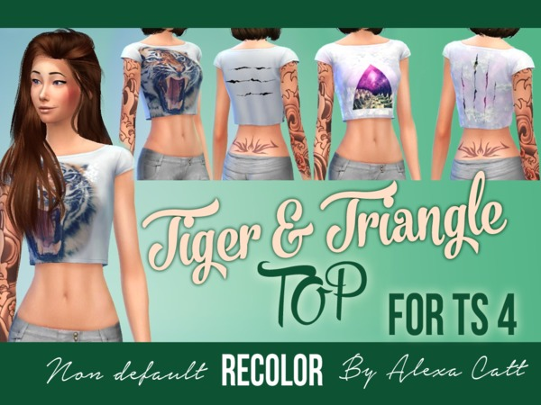 Tiger & Triangle (Top) by Alexa Catt