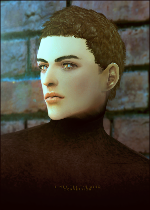 3T4 Alex hair conversion at Black-le