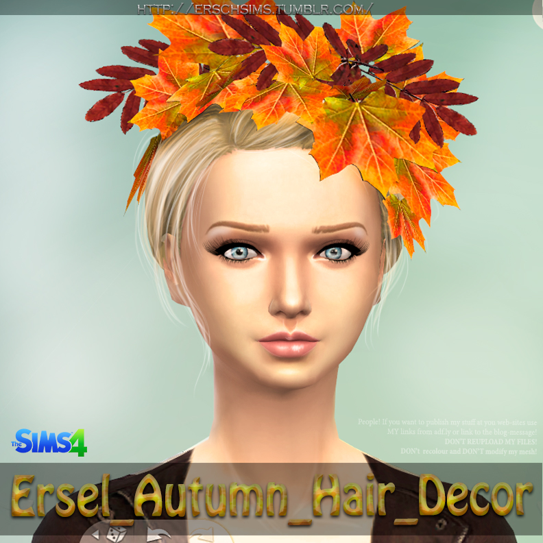 Autumn Hair Decor by Ersel