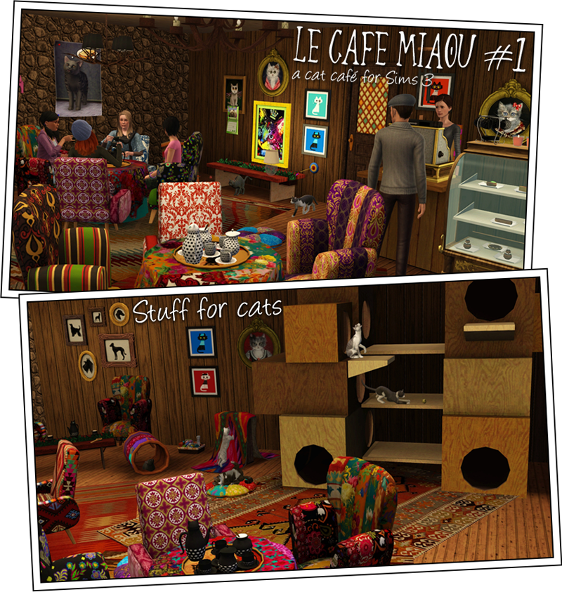 Le Caf Miaou, Cat Caf #1 by Sandy