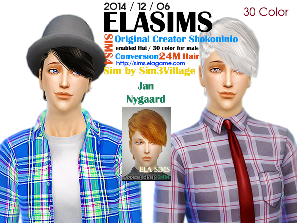 Sims 4 Asked Hair 24M by Elasims