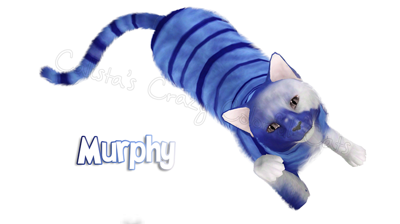 Cat Request Murphy by Calista