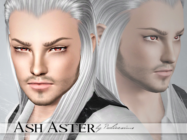 Ash Aster by Pralinesims