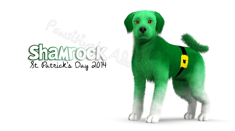 Dog Gift: St. Patrick's Day 2014 by Catlover800
