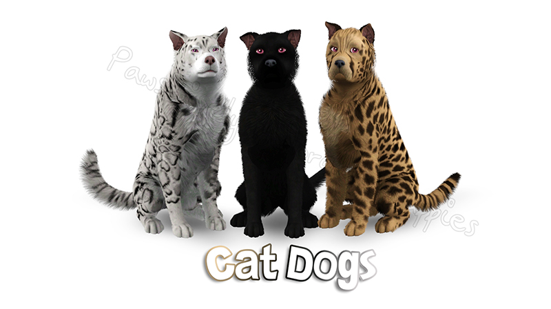 Dog Gift: Cat Dogs by Catlover800