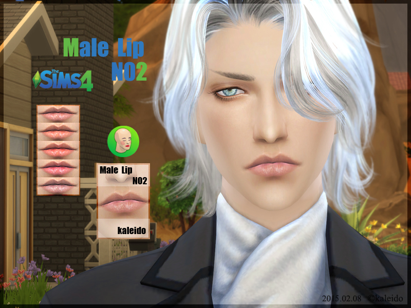 Male lips N2 at KK Sims