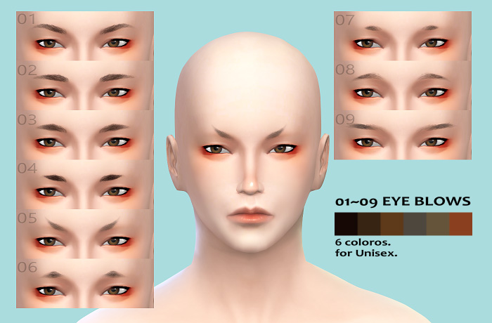 Eyebrows for Males & Females by Imadako